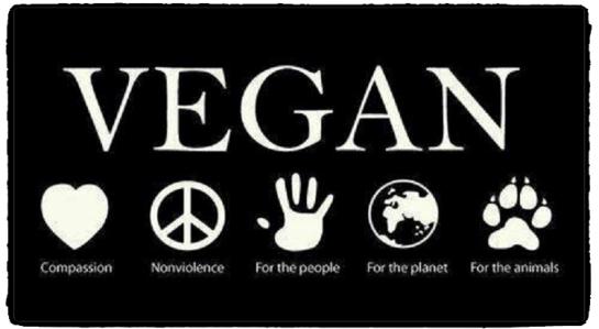 veganblopic1