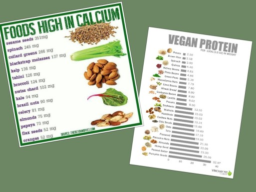 veganproteincalc
